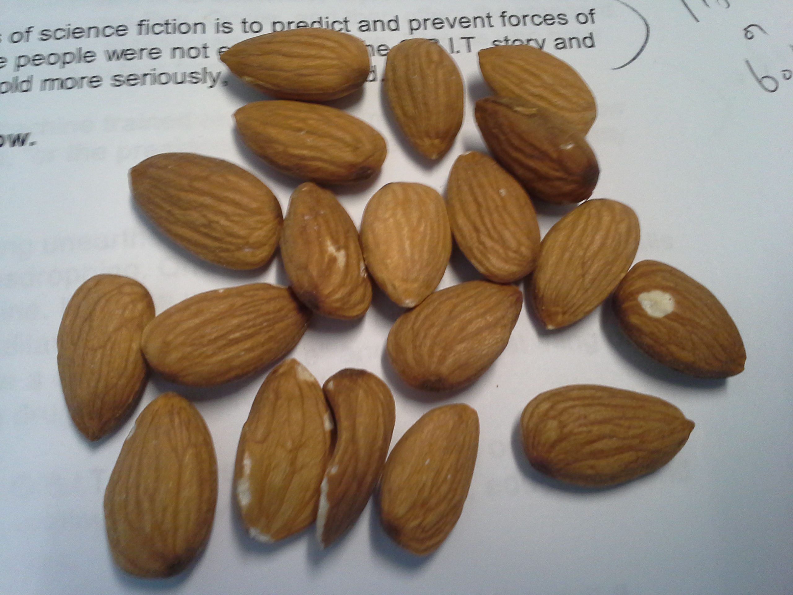 Snack: 3:50 p.m. | 19 raw almonds